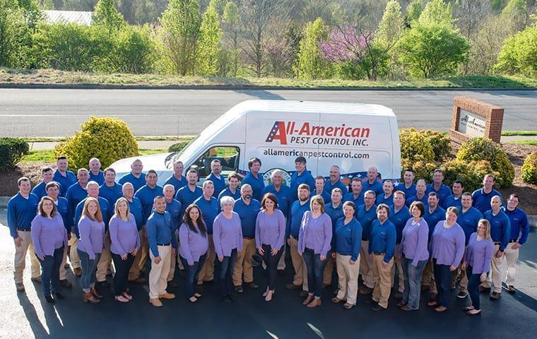 all-american pest control team