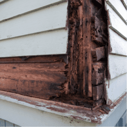side of a home that has been destroyed by termites