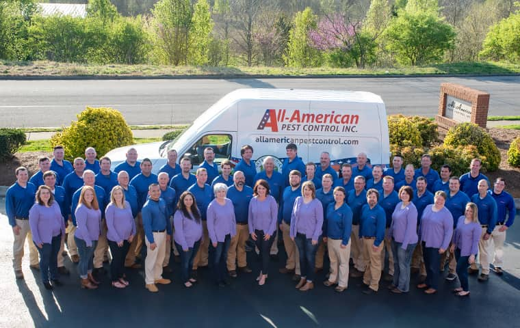 nashville tn pest control team at all-american