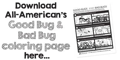 good bug bad bug coloring page