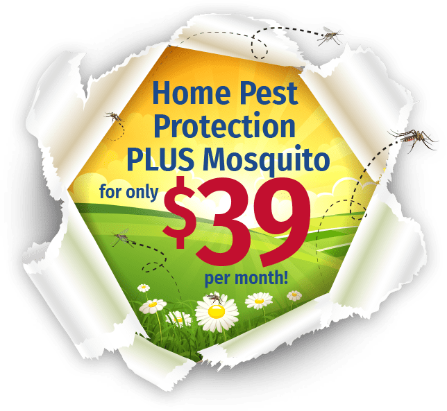 home pest protection plus logo