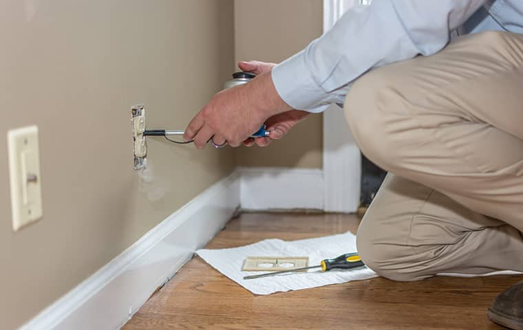 all american tech providing interior home pest control services in donelson tennessee