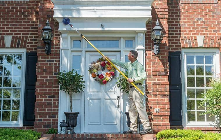 all-american takes care of spider webs on the exterior of homes