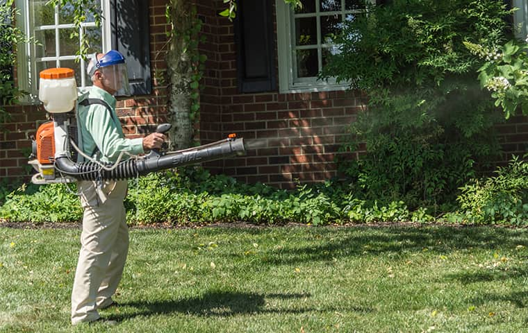 pest control technician treating west nashville yard for mosquitoes