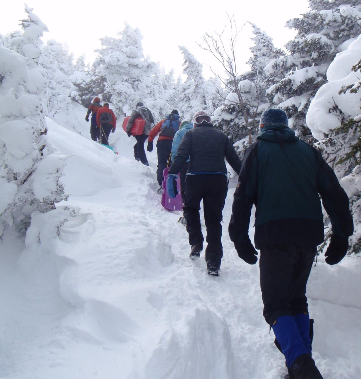 Sometimes trails are packed down enough that you don't need snowshoes. You probably want to bring them just in case though!