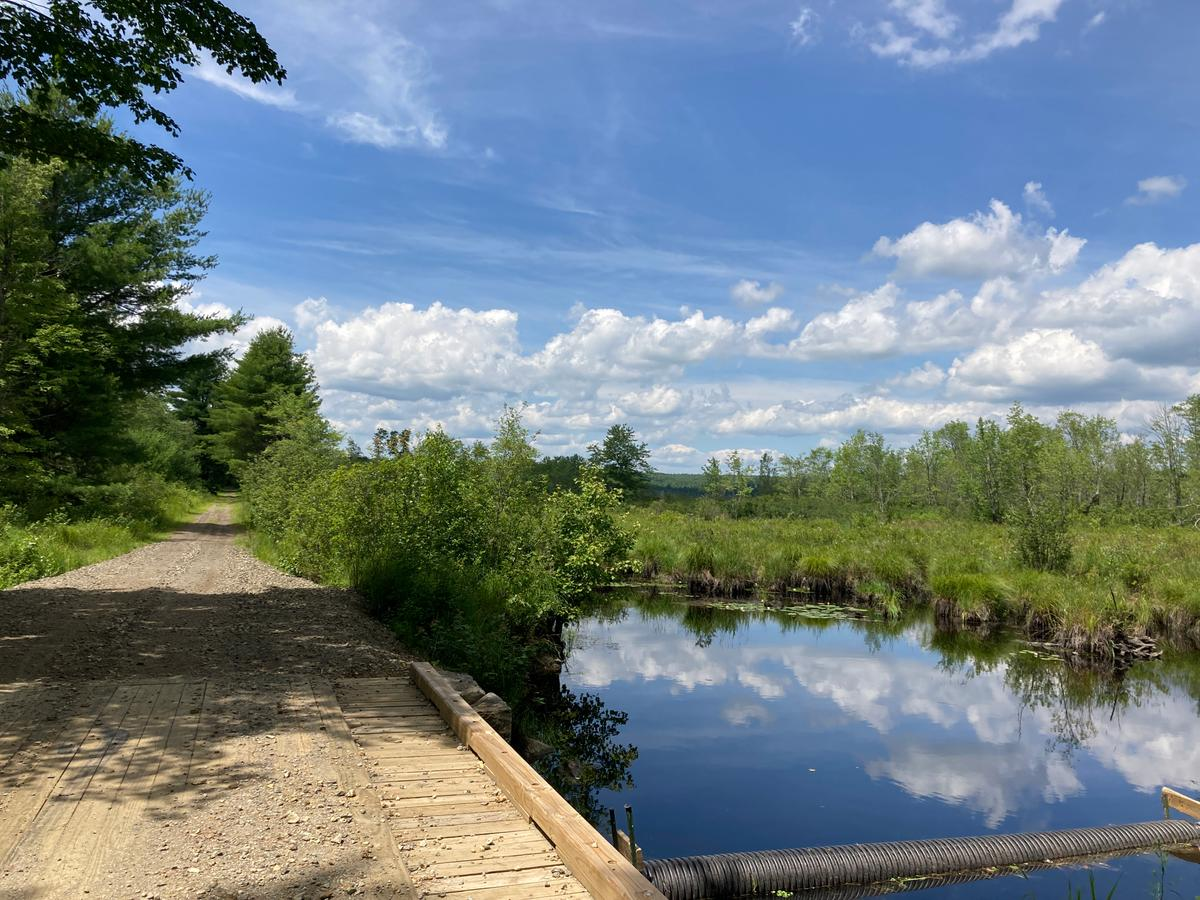 Chamberlain Conservation Area. Photo credit: Monadnock Conservancy