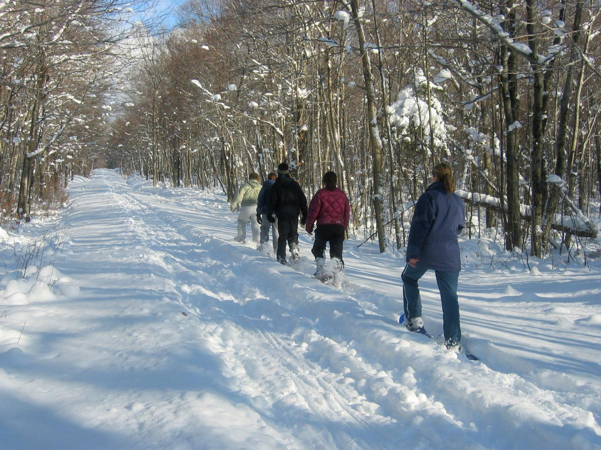 Good winter trail etiquette - snowshoeing away from the established ski tracks.