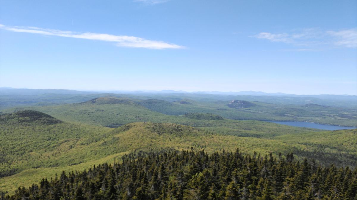 View from the firetower on Bald Mountain