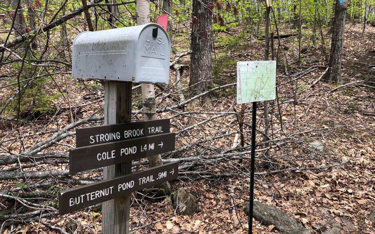 A trail sign stands in the foreground with a mailbox perched on top of it. In the background is another post with a trail map.