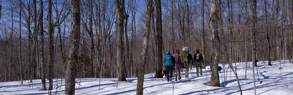 Hiking Haystack in the early spring