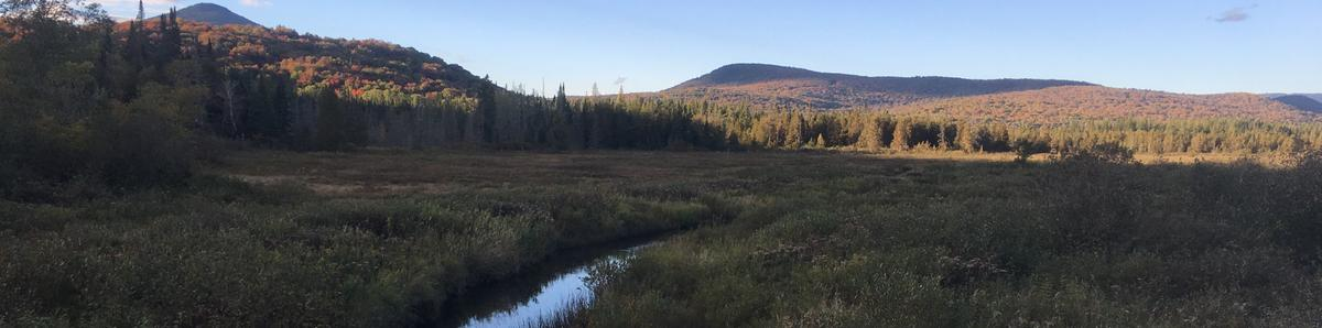 A view as the sun sets of mountains, a bog and a small creek