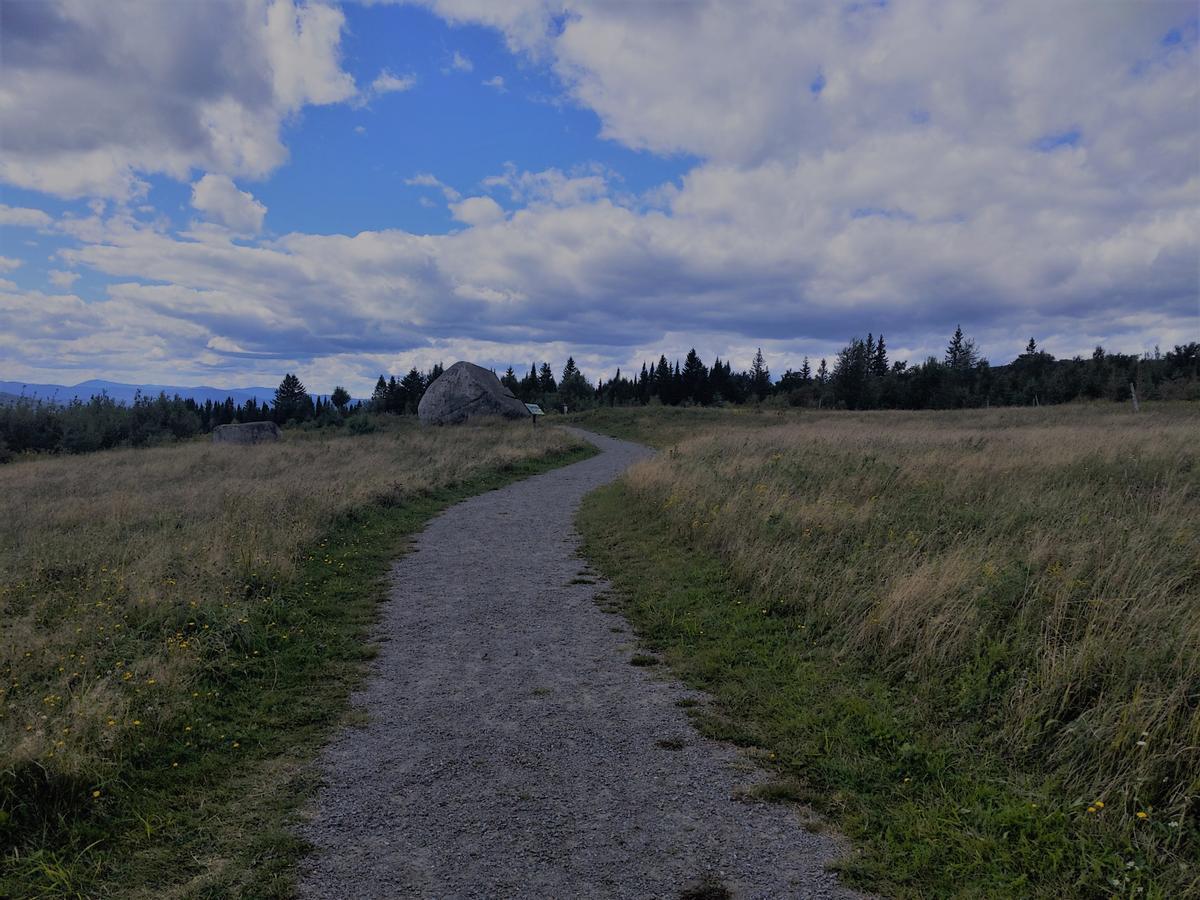 A gravel trail slopes slightly upward toward a viewpoint