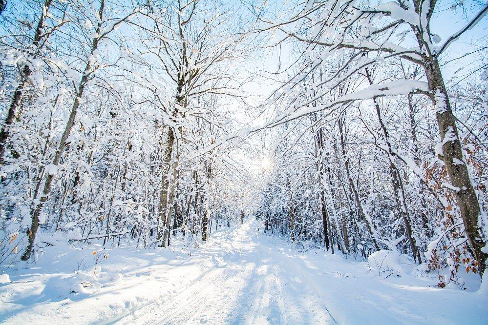 Winter at Seyon Lodge State Park. Photo credit: VT State Parks