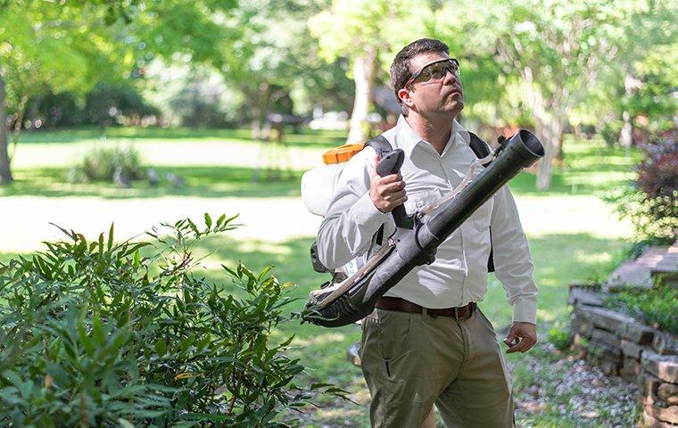 a pest control service technician performing mosquito misting services outside of a home