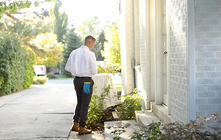 a pest control service technician inspecting the exterior of a home