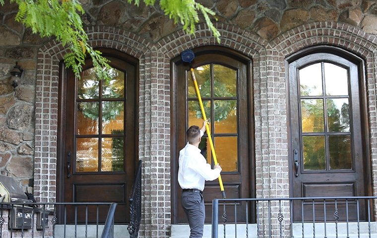 a pest control service technician performing dewebbing treatments on the exterior of a home