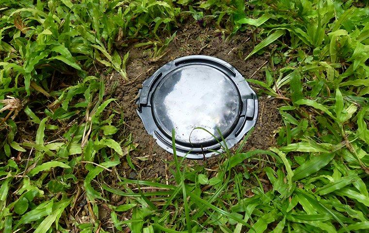 a termite bait station installed in the grass outside of a home