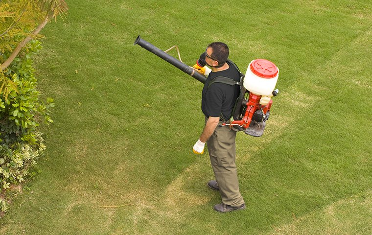 technician spraying for mosquitoes