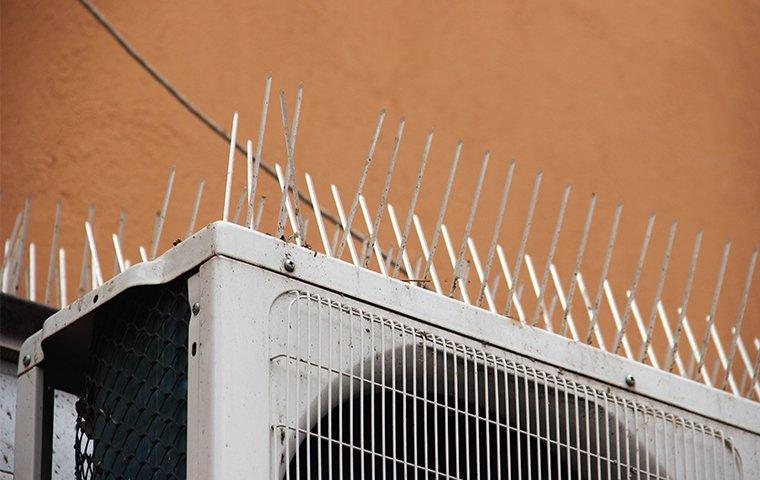 bird spikes on an ac unit