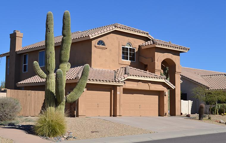 nice home in mesa az