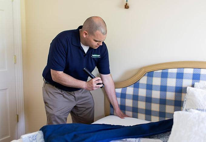 a technician inspecting a bed for bed bugs in a new york hotel