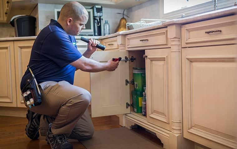 parkway technician treating for ants in residential kitchen