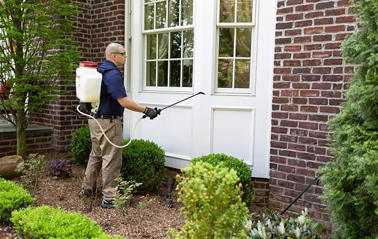 parkway technician treating outside of home