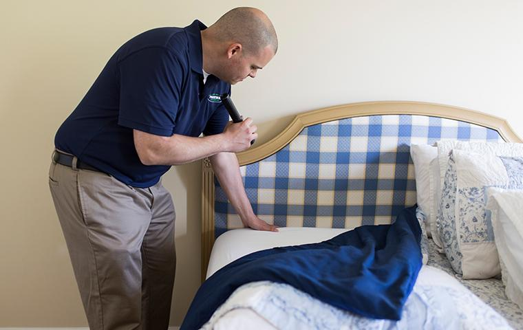 a technician inspecting a bed for bed bugs in a new york home