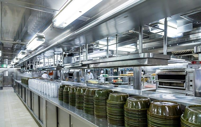 a clean and organized commercial kitchen still in danger of rodent infestation in westchester new york