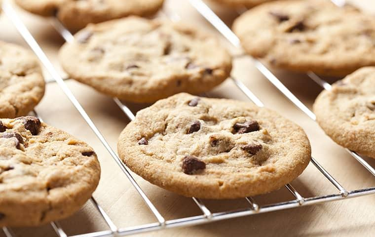freshly baked cookies cooling in kitchen