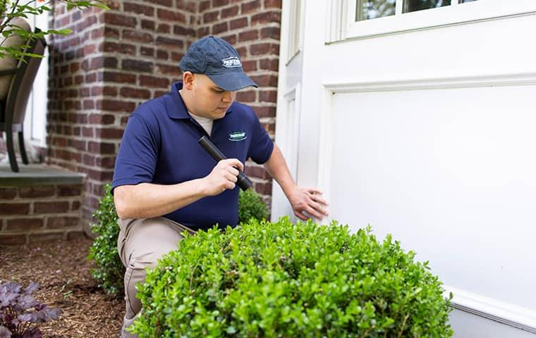 technician inspecting a home for pest problems