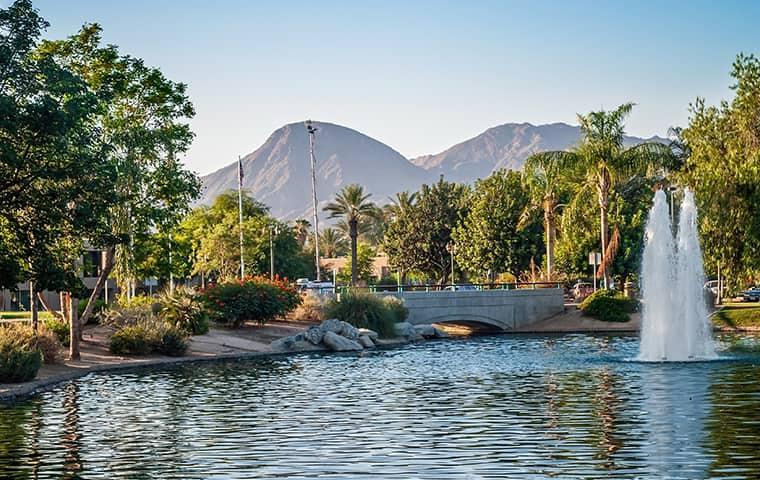 beautiful view in palm springs california