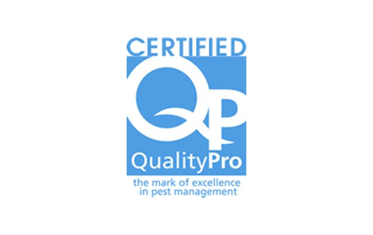quality pro certification in ny
