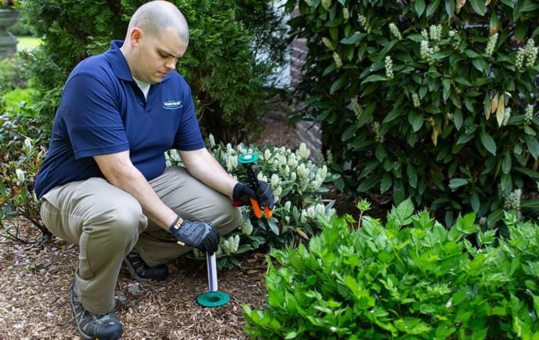 Sentricon Is A Green Solution To Termite Problems