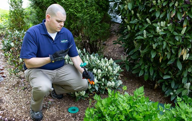 a professional pest control service technician crouched down in front of a westchester home in new york as he is infestation and treating a property for termite control
