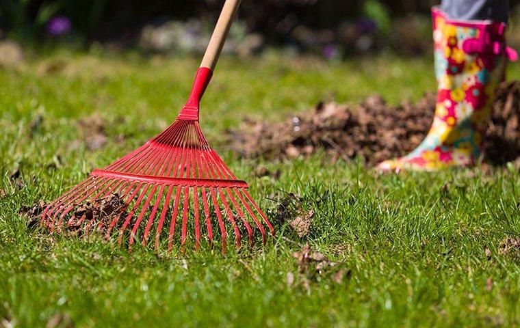 women racking the lawn