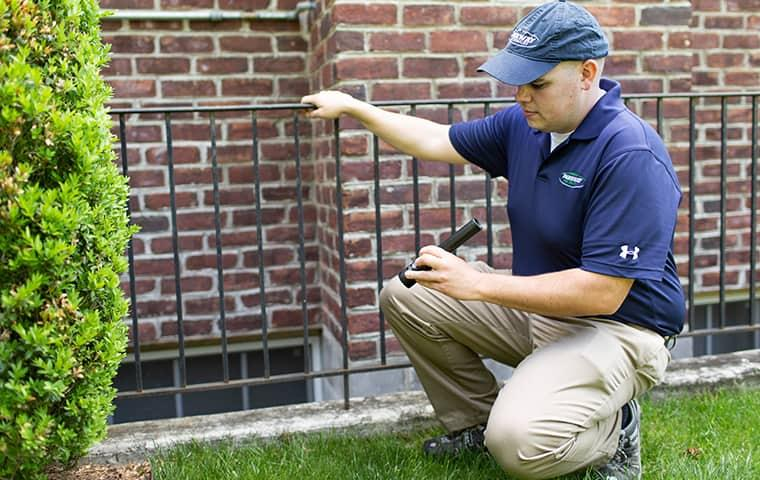 pest control expert inspecting around the foundation of a new york home