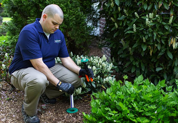 pest control professional installing termite control in valley stream