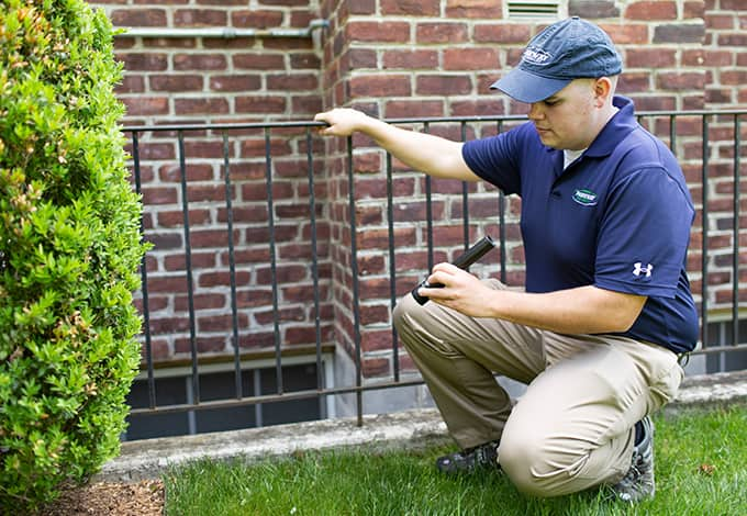 plainview new york home pest control technician