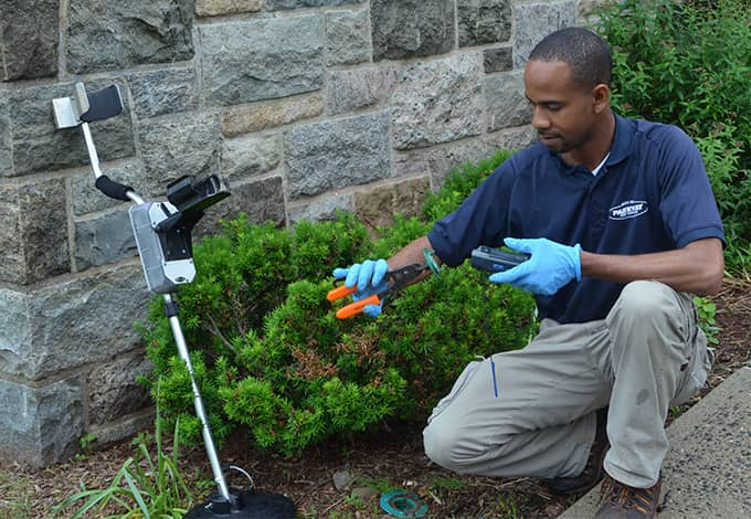 technician inspecting glen cove property for termites