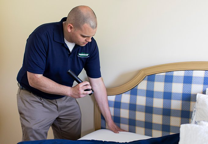 pest control technician inspecting for bedbugs in a home in malverne new york