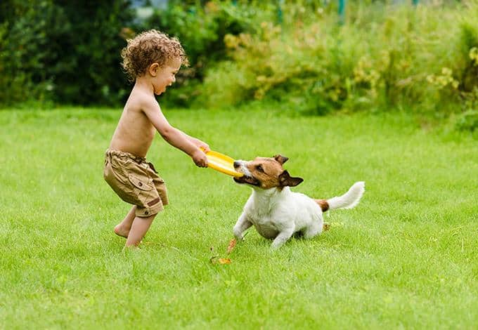 child and dog playing in the yard of a new york home
