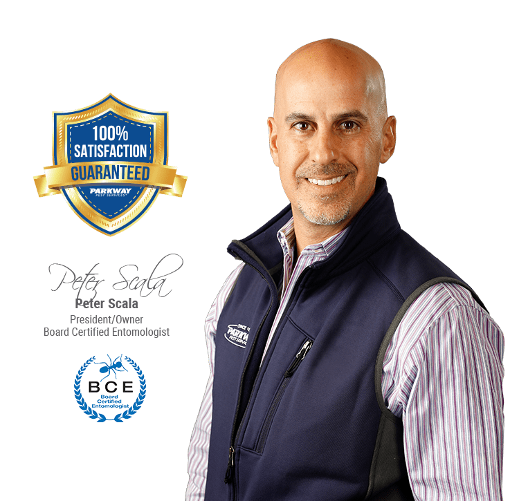 board certified entomologist and owner peter scala