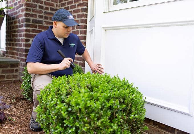 long island pest control technician inspecting foundation