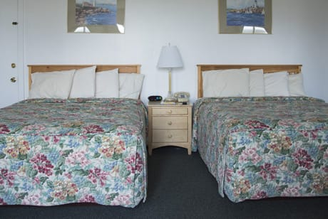 rooms with two queen sized beds near acadia national park