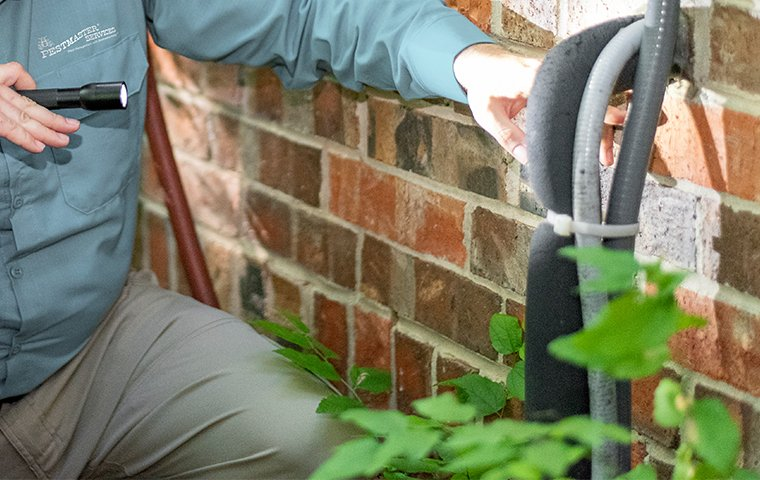 a pest technician inspecting the exterior of a home