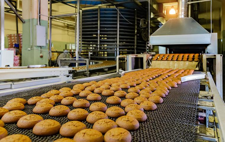 interior of a cookie factory