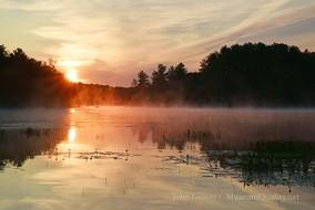 Sunrise fog wilton
