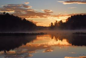 foggy sunrise wilton