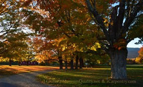 'Untitled' Landscape, Fall, Folliage, New England, Photography, Sunsets, mountains, Trees, Museum Quality